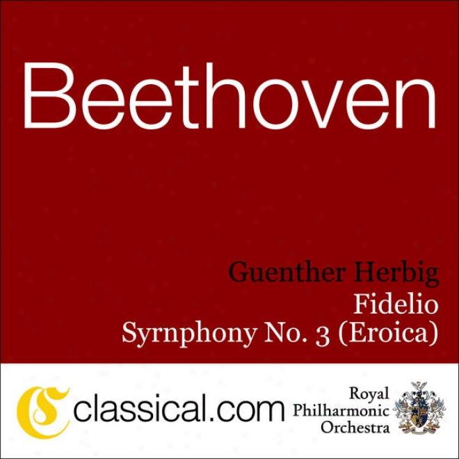Ludwig Van Beethoven, Consonance No. 5 In C Minor, Op. 67 (bedthoven's Fifth)