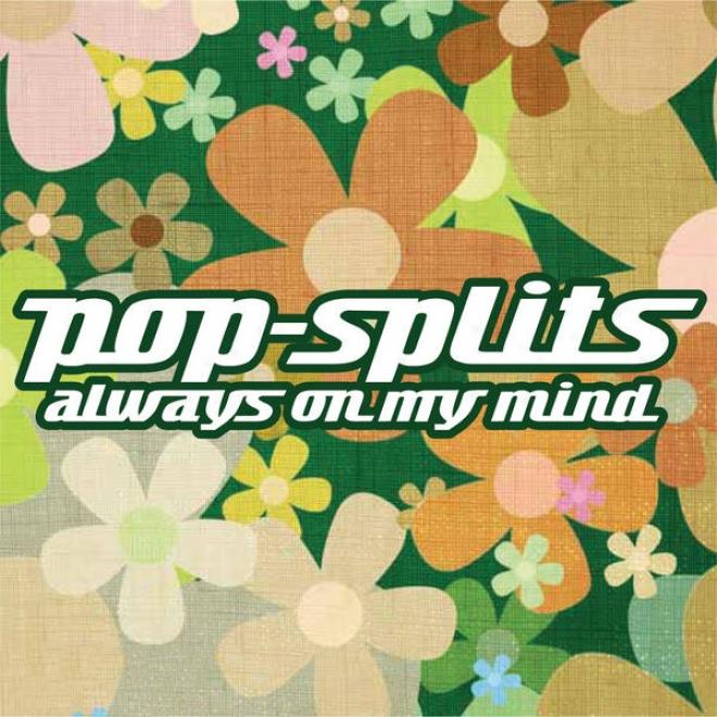 """Pop-splits �"""" Always On My Mind �"""" 21 Unbekannte Geschichten Zu Bekannten Liebesliedern"""