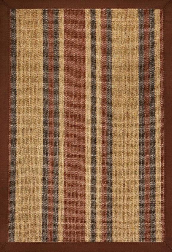3' X 5' Sisal Area Rug With Earth Tone Stripes Brown Border