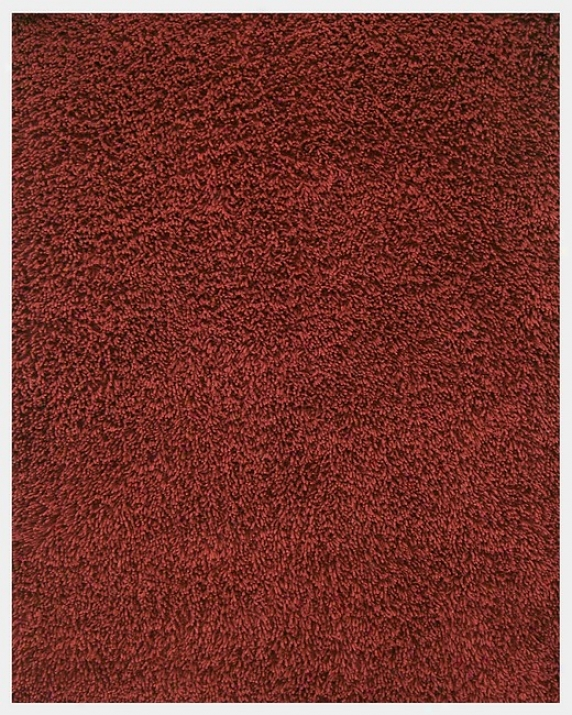 4' X 6' Crimson Environmentally Friendly Bamboo Shag Area Rug