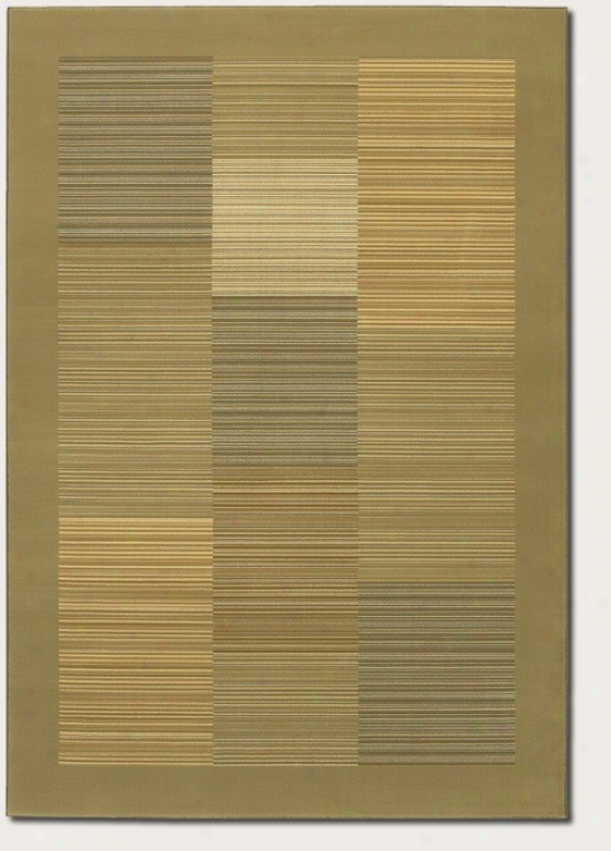 9'2&quot X 12'5&quot Area Rug Slender Stripe Pattern In the opinion of Sage Border