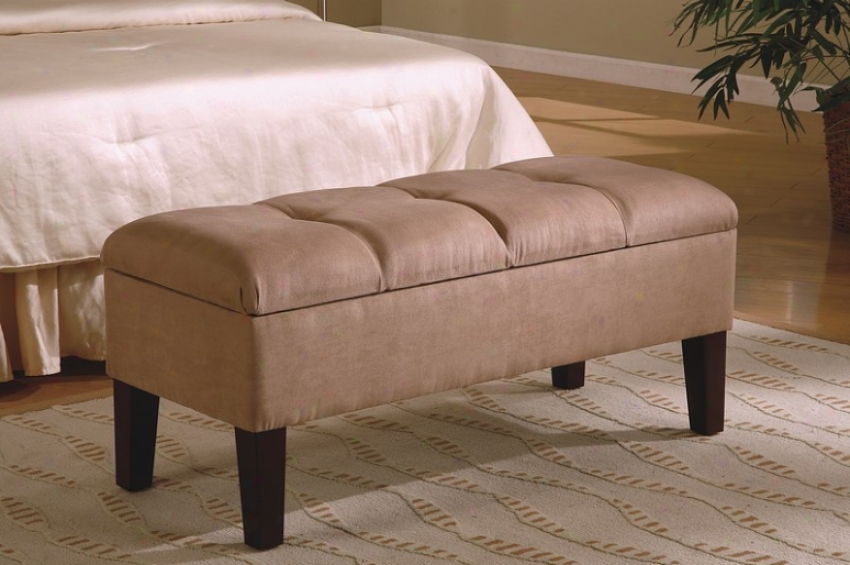 Contemporary Button-tufted Design Storsge Bench