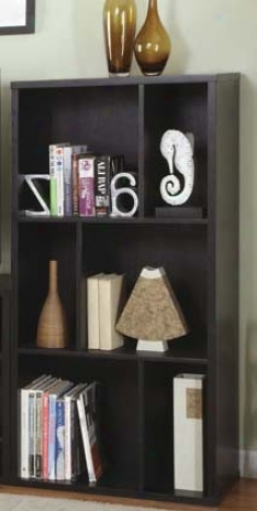 Functional Bookshelf Contemporary Style In Blacck Finish