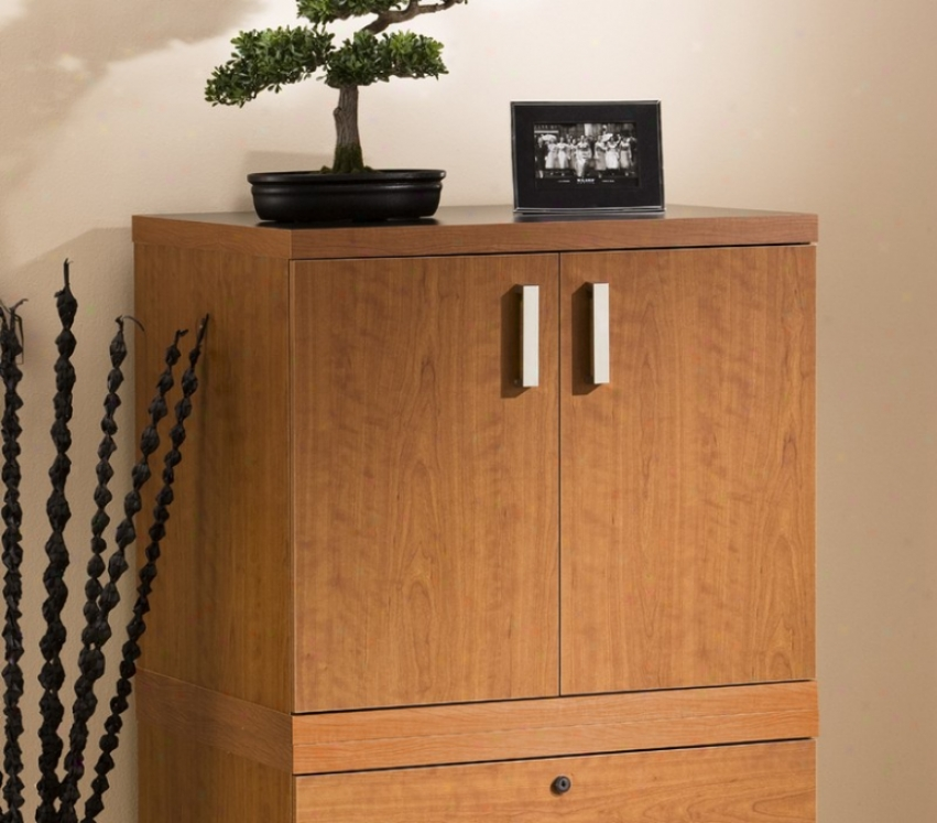 Homee Office Storage Closet Contemporaty Style In Autumn Cherry Finish