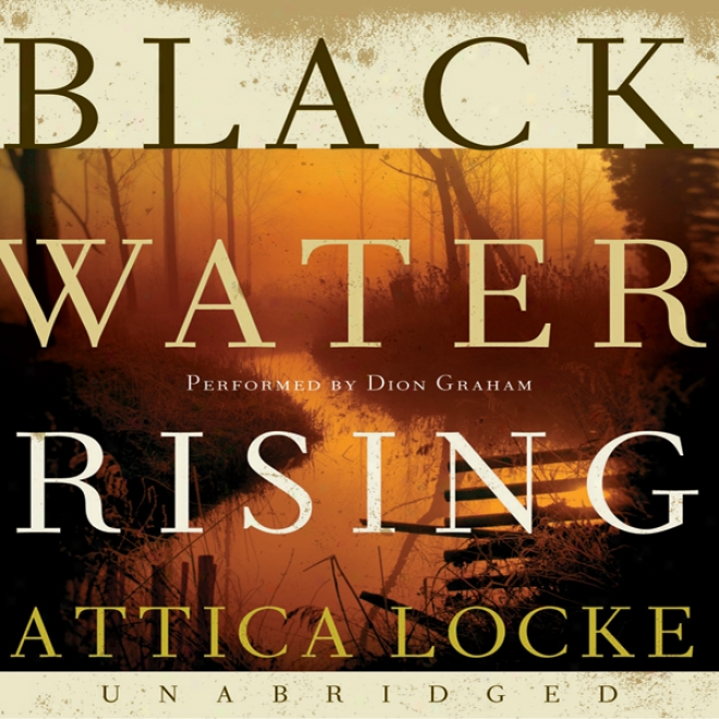 Black Water Rising (unabridged)