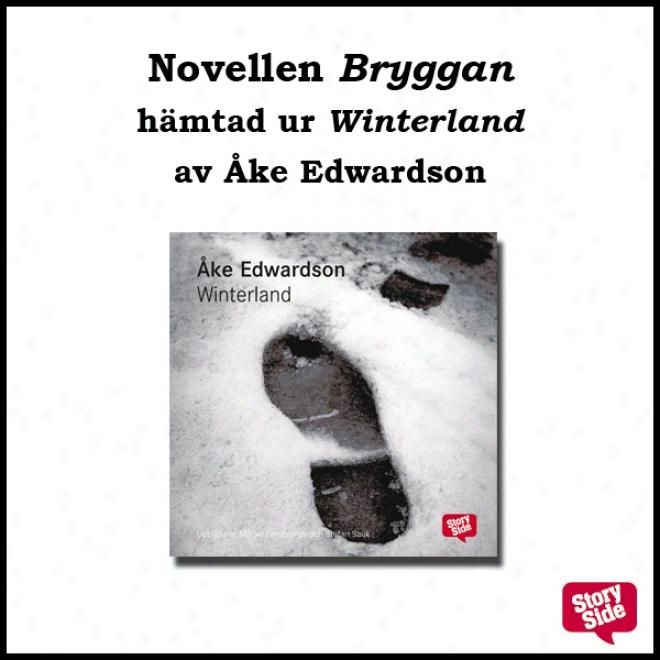 Bryggan [en Storyside Novell] (unabridged)