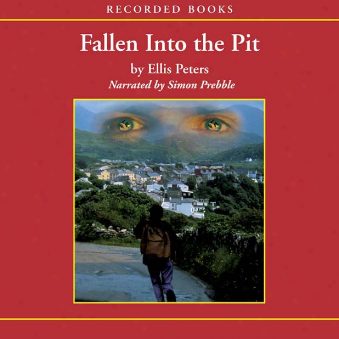 Fallen Into The Pit: An Inspector Felse Mystery (unabridged)