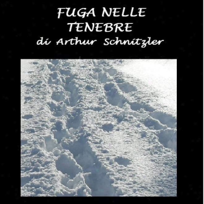 Fuga Nelle Tenebre [Volley Into Darkness] (unabridged)