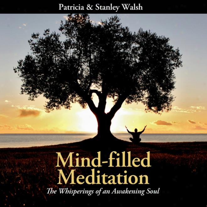 Mind-filled Meditation: The Whisperings Of One Awakening Soul (unabridged)