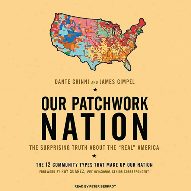 Our Patchwork Nation: The Surorising Tuth About The 'real' America (unabridged)