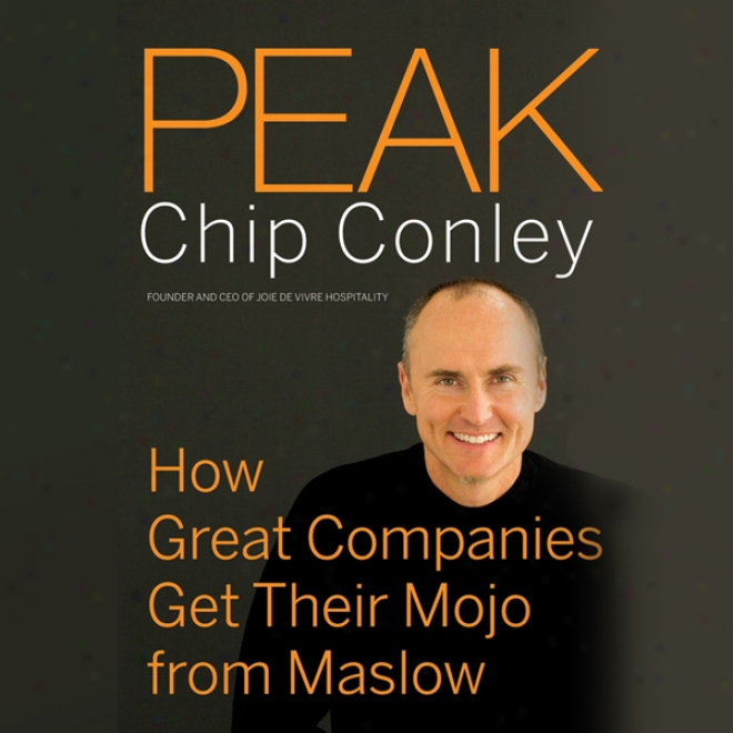 Peak: How Great Companies G3t Their Mojo From Maslow (unabridged)