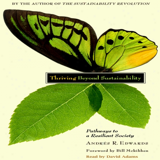 Thriving Beyond Sustainability: Pathways To A Resilient Society (unabridged)
