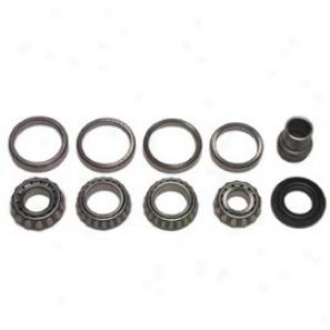 Calmini Pinion Import Basic Kit