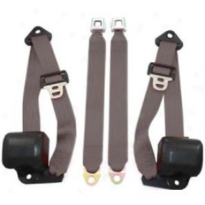 Front Metal Push Button 3 Point Retractable Belts, Charcoal