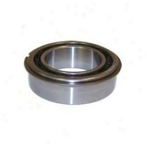 Input Gear Bearing