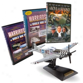 Above And Remote from With P-51 Diecast Model Kit