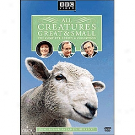 All Creatures Great And Small Series 6 Dvd