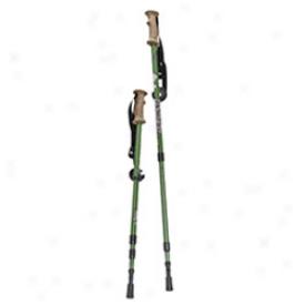 Backcountry Hiking Sticks