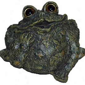 Motion-activted Croaking And Whistling Toads Whistling