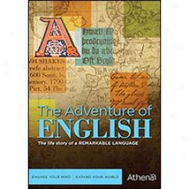 The Adventure Of English Dvvd