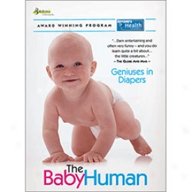 The Baby Human Geniuses In Diapers Dvd