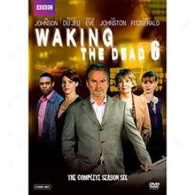Waking The Dead Gratify 6 Dvd