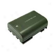Bti Rechargeable Camcorder Battery