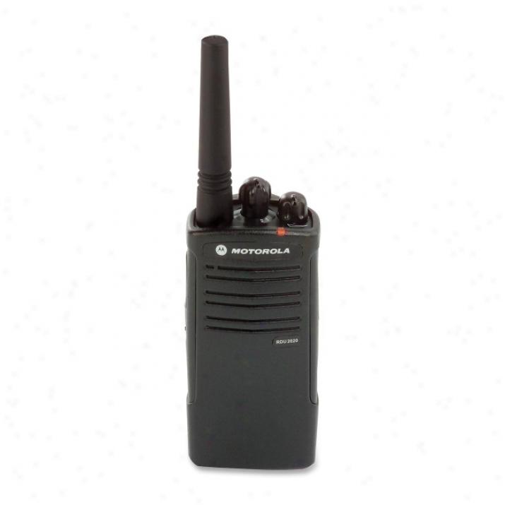 Motorola Rdu2020 Two Custom Radio