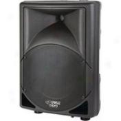 Pylepro Pphp151 Speaker