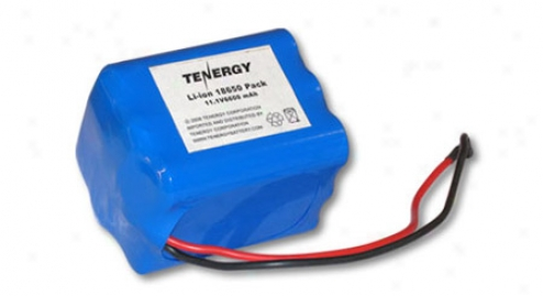 At: Tenergy Li-ion 18650 11.1v 6600mah Pcb Protected Rechargeable Battery Pack W/ Bare Leads