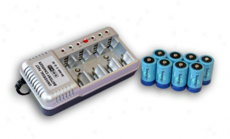 Combo:-T-1199b Universal Battery Charger + 8 D 10000mah Nimh Rechargeable Batteries