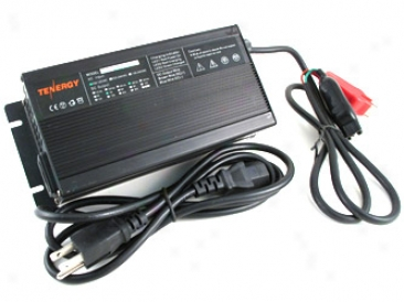 Twnergy 48v 5a Lifepo4 Battery Charger