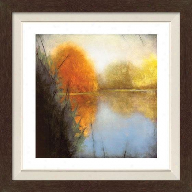 Autumn Marsh I Framed Wall Art - I, Fl5d Espresso