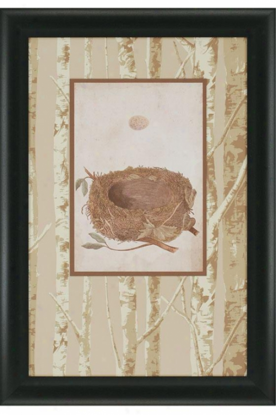 Birds Nest Study I Wall Art - Ii, Ivory