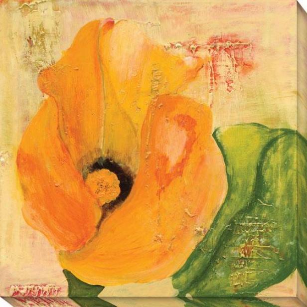 """""""calla Lily In Orange Canvas Wall Art - 40""""""""hx40""""""""w, Orange"""""""