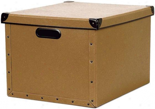 """cargo Naturals Dual File Box - 10.25""""hx12.5""""w, Wheat"""