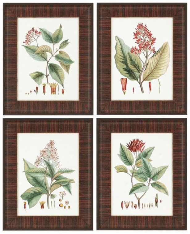 """crimqon Botanical Wall Art - Set Of 4 - 21""""hx17""""w, Red"""
