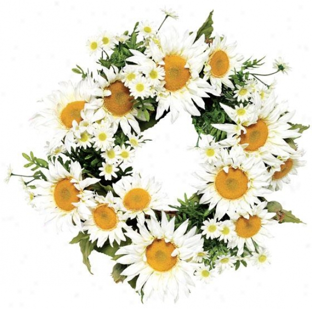 """daisy Wreath - 24""""d, Whtie"""