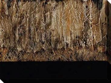 Dreamer Ii Canvas Wall Arg - Ii, Black