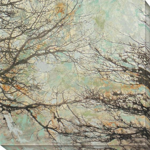 Enchanted Ii Canvas Wall Art - Ii, Black