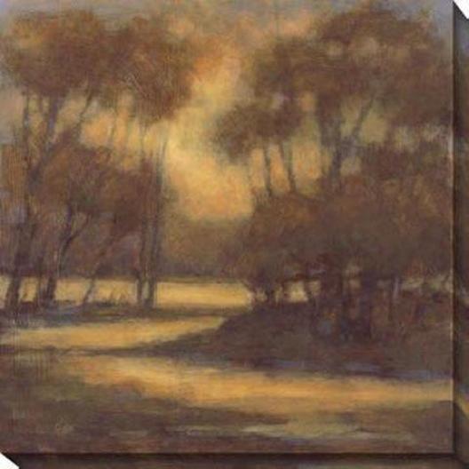 Gentle Light I Canvas Wall Art - I, Brown