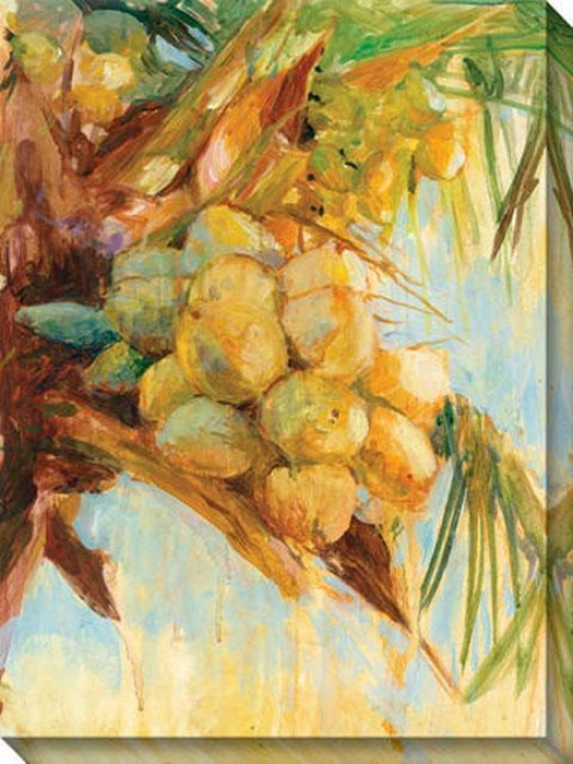 """golden Coconuts Canvas Wall Art - 36""""hx48""""w, Yellow"""