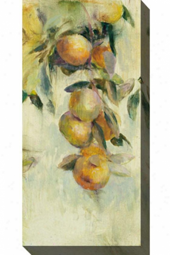 Golden Fruit Study I Camvas Wall Art - I, White