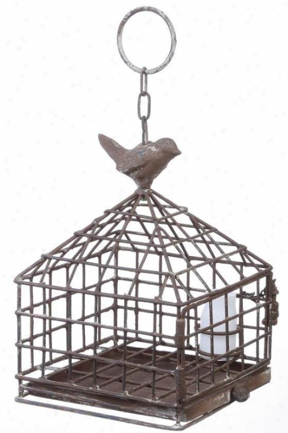 """""""iron Birdcage With Feeder - 6""""""""squarex9""""""""h, Pumpkin"""""""
