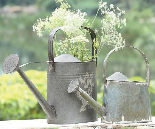 Iron Watering Can - 14.5x4.75, Silver