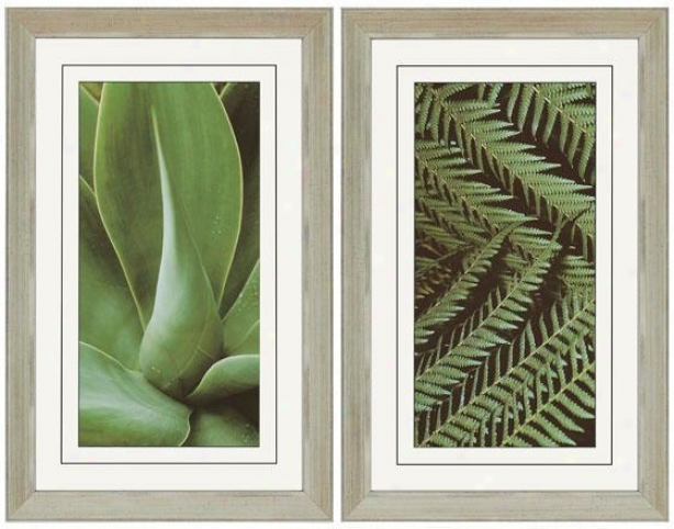 Natura I Wall Art - Set Of 2 - Set Of 2, Green