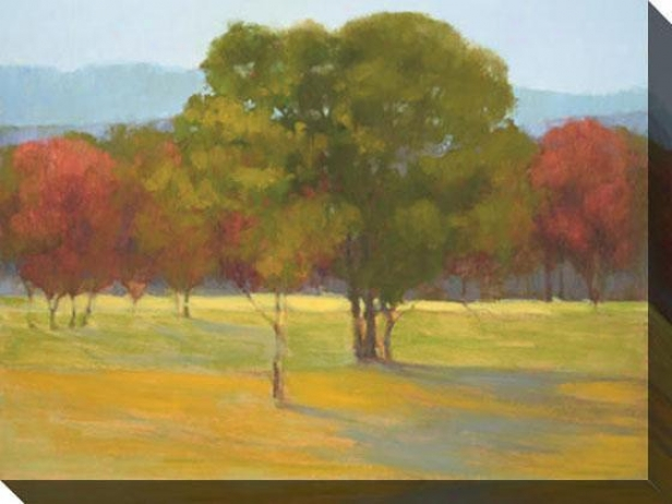 """oak With Red Trees Canvas Wall Art - 48""""hx36""""w, Flourishing"""