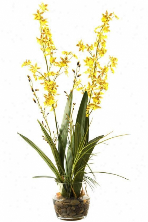 """""""orchids In Glass Dish - 32""""""""hx16""""""""w, Yellow"""""""