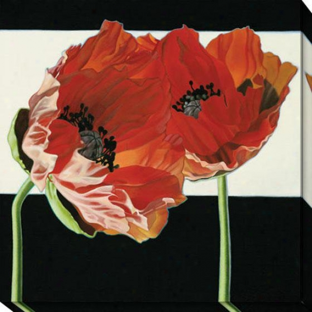 """poppies With Negro And White Canvas Wall Art - 40""""hx40""""w, Black"""