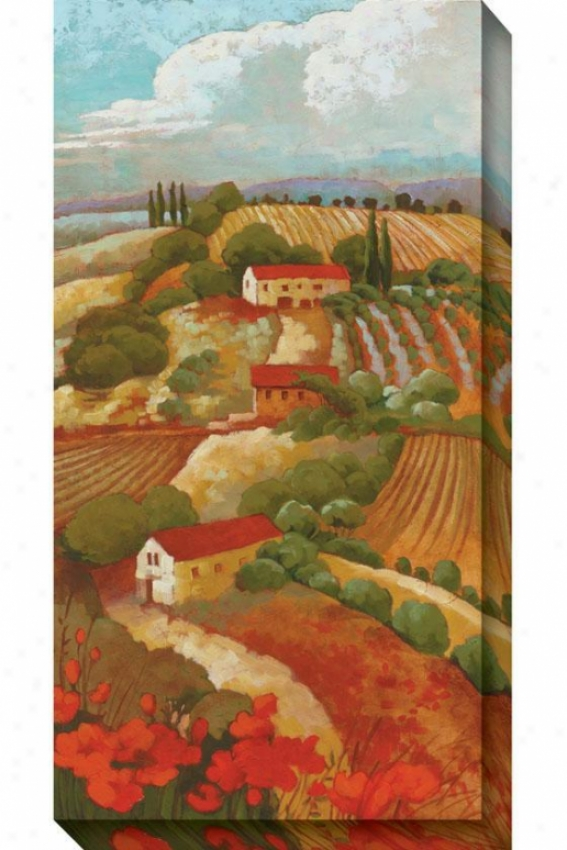 Red Tuscan Ii Canvas Wall Art - Ii, Rer